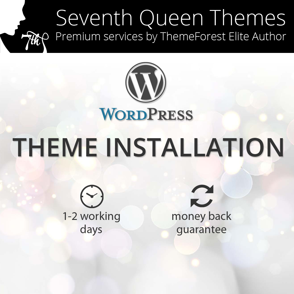 wp-theme-installation-service